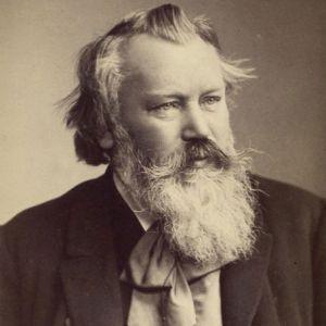 8. Benjamin Kruithof-J.Brahms-1mvt Allegro Ma Non Troppo En Mi Min.op38